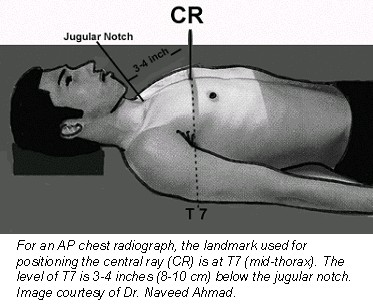 Index on sternum location in human body