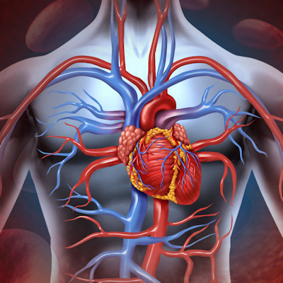 Doctors may be ordering too many coronary interventions