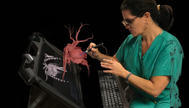 Examination of medical images of vasculature as a holographic display through EchoPixel