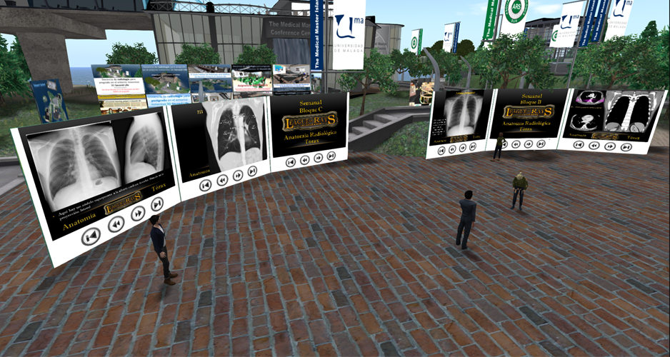 Virtual students browse selection of images