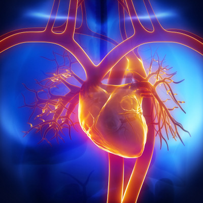 CCTA biomarker spots high-risk plaques in heart disease
