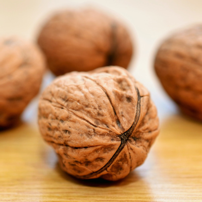 fMRI shows how walnuts influence hunger